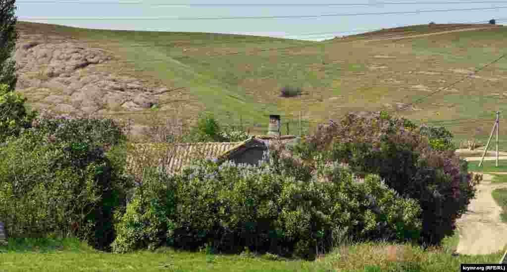 Утопающий в кустах цветущей сирени старый дом на окраине села