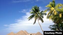 Што выбіраюць беларусы — Мальдывы (на фота) ці Мядзел?