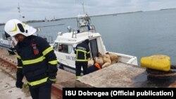 Operațiunea de salvare a unor animale pe mare este prima de acest fel din România.