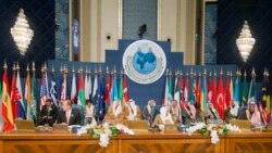 The opening session of the Syrian Donors Conference at the Bayan Palace Liberation Hall in Kuwait City on January 15.