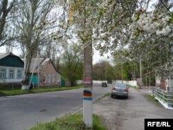 Боротьба прапорів України та угруповання «ДНР» на стовпах у Торезі
