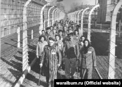 Група в'язнів концтабору «Аушвіц» біля колючого дроту після звільнення