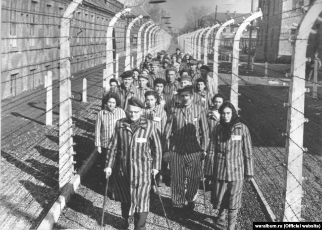 Група в'язнів концтабору «Освенцим» біля колючого дроту після звільнення. Фото з виставки «Тріумф людини. Мешканці України, які пройшли нацистські концтабори»