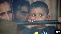 Родина біженців на угорсько-сербському кордоні