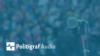Politigraf logo audio