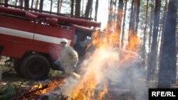 Силы, брошенные на борьбу с лесными пожарами, по мнению экспертов, недостаточно квалифицированы для этой работы.