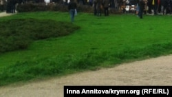 Трава (Архивное фото)