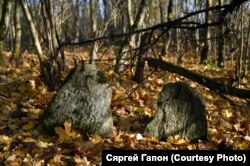Надмагільныя камяні ў зарасьцях