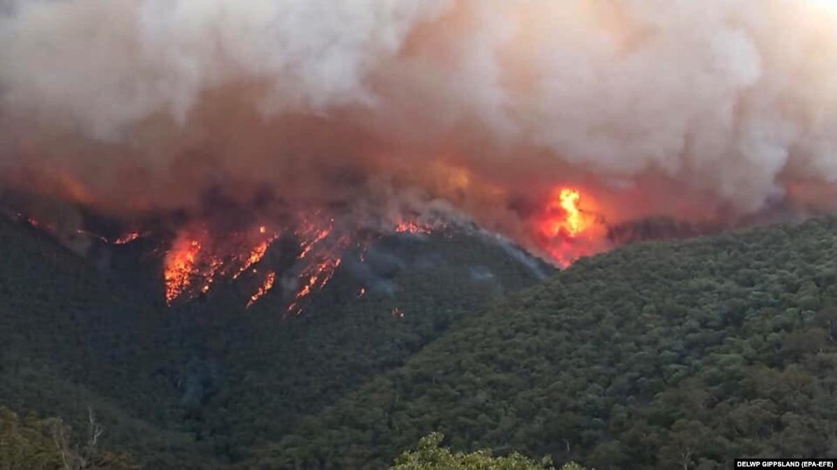 МИД: Украина готова помочь Австралии бороться с лесными пожарами