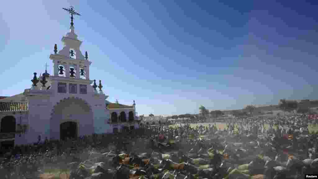 Ýabany ýabylar El Rosio hramynyň ýanyndan günorta Ispanaýy, Almontedäki mal bazaryna alnyp barylýar. (Reuters/Marcelo del Pozo)