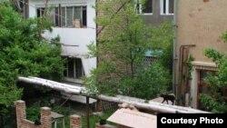Дом и мастерская художника Нигмата Кузибаева в Ташкенте.