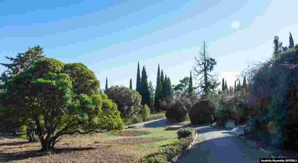 Тропа пересекает парк у Ливадийского дворца-музея