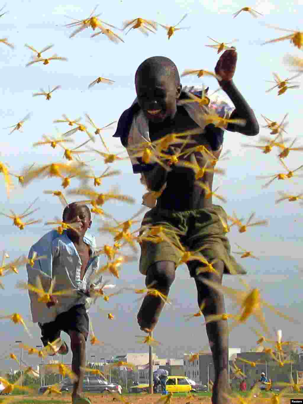 Senegalese children run as locusts spread in the capital Dakar September 1, 2004. Only a military-style operation with bases across West Africa can stop the worst locust invasion for 15 years, Senegal's President Abdoulaye Wade said on Tuesday as the insects swept into his capital. The United Nations Food and Agriculture Organisation (FAO) warned last week that the locust swarms infesting countries from Mauritania to Chad could develop into a full-scale plague without additional foreign aid. REUTERS/Pierre Holtz
