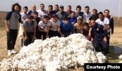 Өзбекстанның мақта теріп жүрген футболшылары. (Көрнекі сурет)