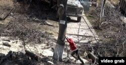 Bakıda ağacların kəsilməsi - fevral 2012