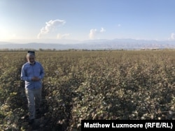 Abdukholik Gadoev surveys his cotton field at the end of a summer that produced another poor harvest.