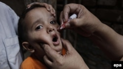 A health worker administers the Polio vaccine to a child in Peshawar.