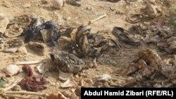 Массовое захоронение убитых экстремистами езидов в Синджаре (северо-запад Ирака)