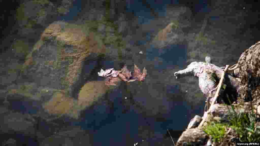По информации местных СМИ, которую обнародовали в конце марта 2018 года, российские власти Симферополяпотратят на очистку русла реки Салгир 17 миллионов рублей (около 7,5 миллионов гривен)