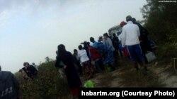 Сбор хлопка в Туркменистане