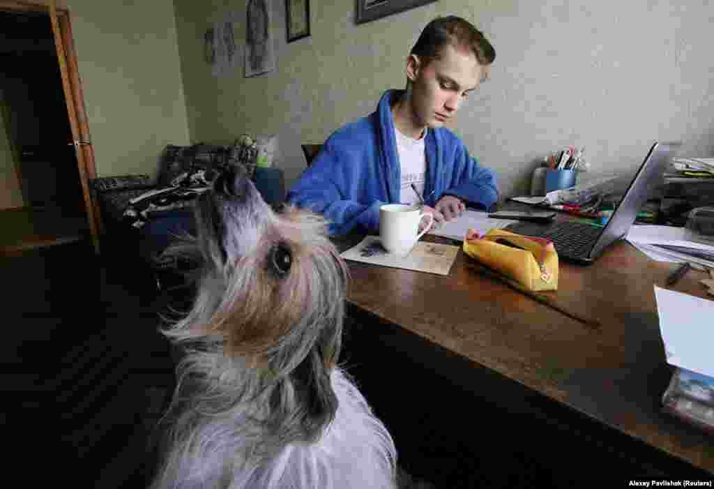 Егор Павлишек из Евпатории (Украина) делает уроки. Рядом со школьником — его собака Пинки.