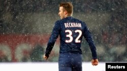 David Beckham - foto arkivi