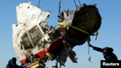 """Обломок """"Боинга"""", сбитого над Донбассом 17 июля 2014 года (место крушения в районе села Грабово, под Донецком)"""