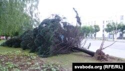Паваленая елка насупраць абласной управы КДБ