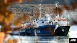 "Anija e organizatës Greenpeace ""Arctic Sunrise"""