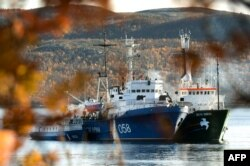 Судно Arctic Sunrise в порту российского Мурманска. Октябрь 2013 года.