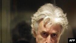 В следующий раз Караджич предстанет перед трибуналом 17 сентября