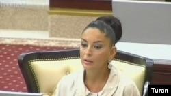 Mehriban Əliyeva «Amnistiya haqqında» qanun layihəsini Milli Məclisin müzakirəsinə təqdim etdi