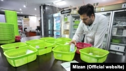An employee preparing medicines in a pharmacy in Tehran, Iran. File photo