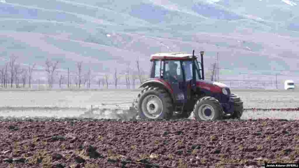 Жакадагы трактор.