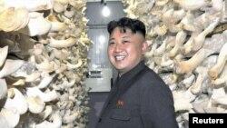 رهبر جوان کره شمالی در یک مزرعه قارچ