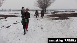 Кыргыз-өзбек чек арасынан ары-бери каттоо соңку 6 жылдан бери татаалдашып кетти.