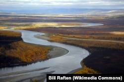 Река Коюкук осенью. Фото Билла Рафтена