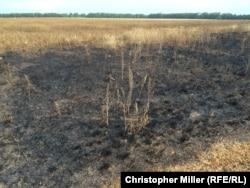 """Фотографии выжженной земли на месте запуска ракеты из """"Бука"""""""