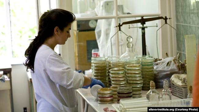 გ. ელიავას სახელობის ბაქტერიოფაგიის, მიკრობიოლოგიისა და ვირუსოლოგიის ინსტიტუტი