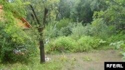 Затоплены панадворак у Магілёве
