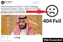 Норвежский блогер Пол Стейган удалил статью об угрозах саудовского принца в адрес России