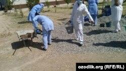 Медработников в Узбекистане часто привлекают к хлопкоуборочным работам, а также к традиционным субботникам.