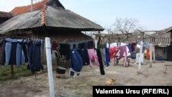 În curtea familiei Tertiuc la Nisporeni...