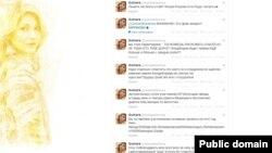 Screen shot from Gulnara Karimova's disabled Twitter account