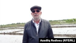 Fayiq Cəfərzadə