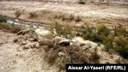 مزارع في محافظة النجف تعاني من الجفاف