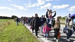 Дания қазағы диаспора жайлы айтты