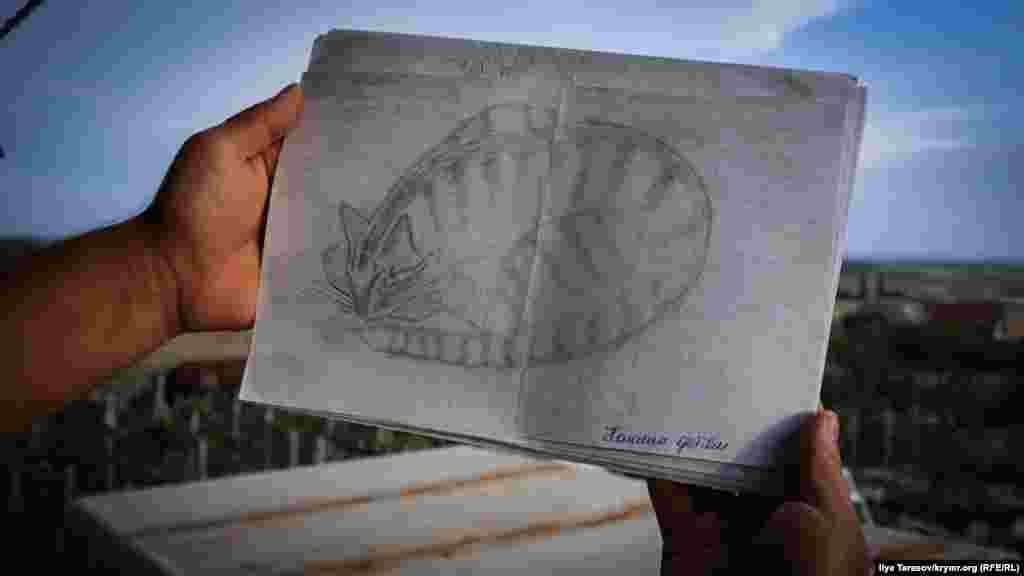 Кот по кличке Тигр часто приходил через решетку в камеру Рамазанова. «Бывает, я проснусь, а он спит со мной на койке. Как раз под тем боком, который мне отбили при задержании», – рассказывает Исмаил. Кот нарисован на обратной стороне апелляционной жалобы об очередном продлении ареста. Этот рисунок Рамазанов посвятил детям крымских татар, задержаных в СИЗО по политическим мотивам