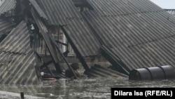 Топан су құлатқан тұрғын үйдің шатырында жатқан ит. Мақтарал ауданы, Өргебас ауылы, 3 мамыр 2020 жыл.