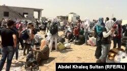 Refugjatët kurdë, të ikur nga Siria për në Irak...